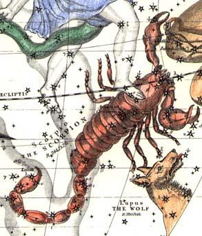 scorpius2