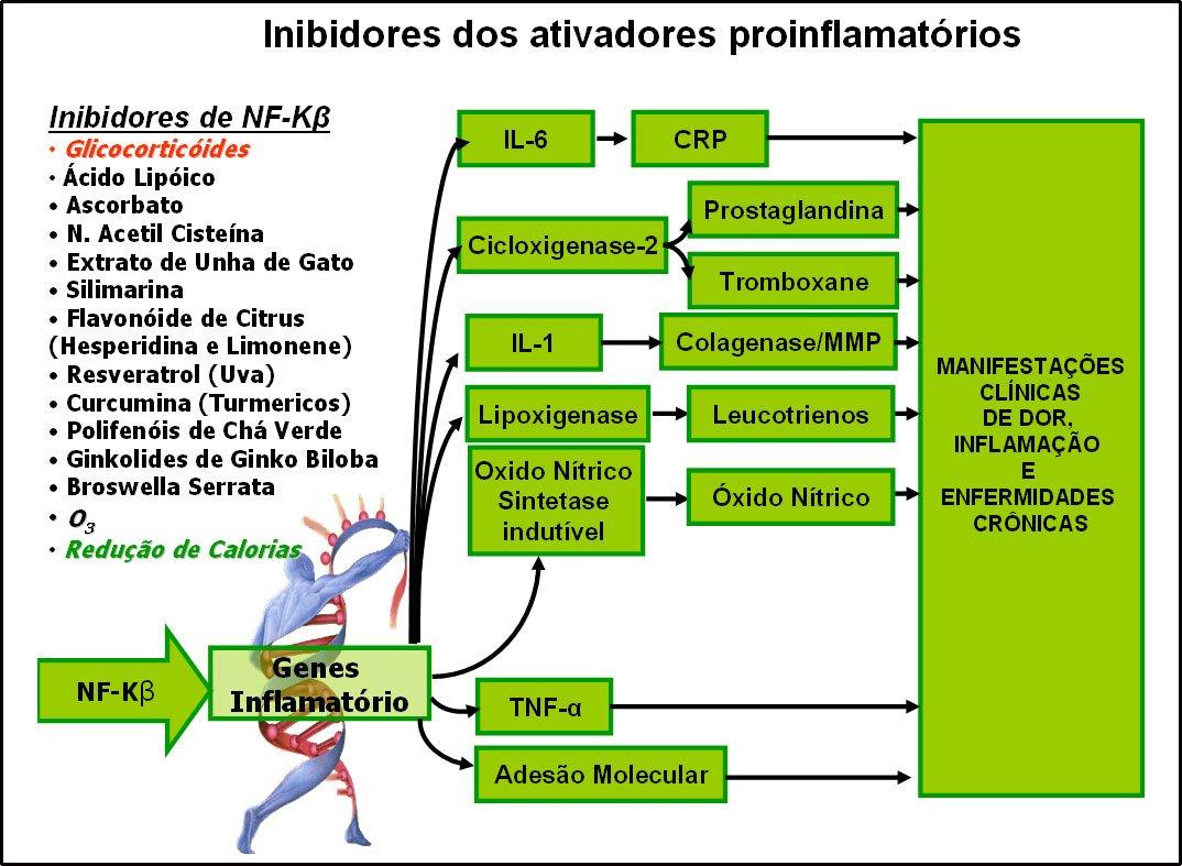 NfKBeta-Inibidores-G